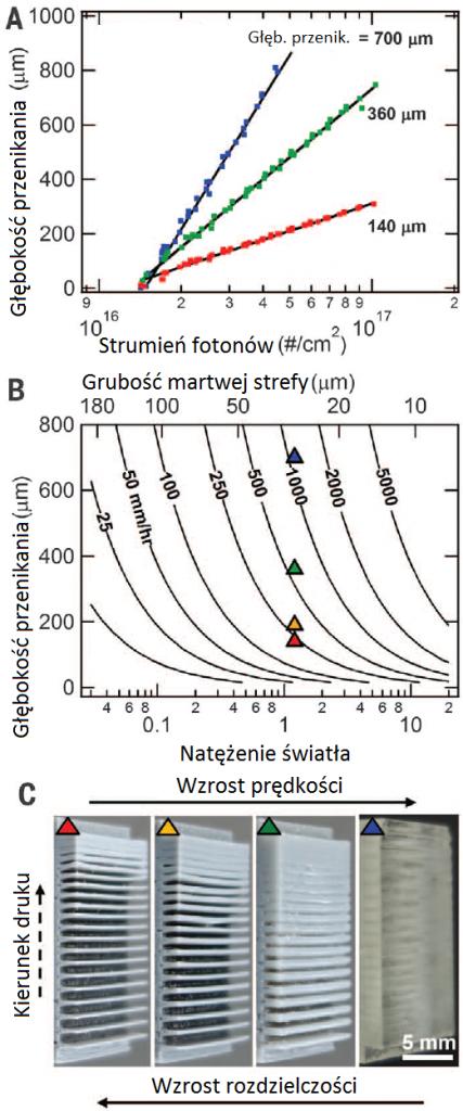 Rys. 3. (A) Głębokość przenikania w funkcji natężenia strumienia fotonów. (B) Zależności prędkości druku od grubości martwej strefy, głębokości przenikania i natężenia światła. (C) Wydruki testowe ukazujące wzajemną relację prędkości druku i rozdzielczości. [DOI: 10.1126/science.aaa2397]
