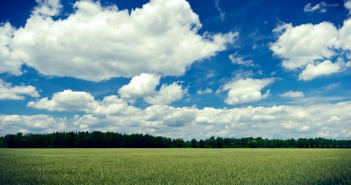 Simply a Grainfield, partly cloudy Sky, Midday Sun
