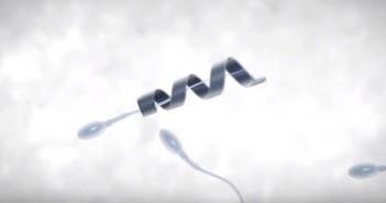 Spermbot 01